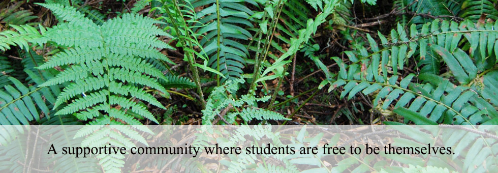 A supportive community where students are free to be themselves