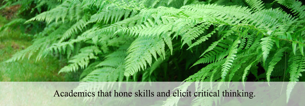 Academics that hone skills and elicit critical thinking