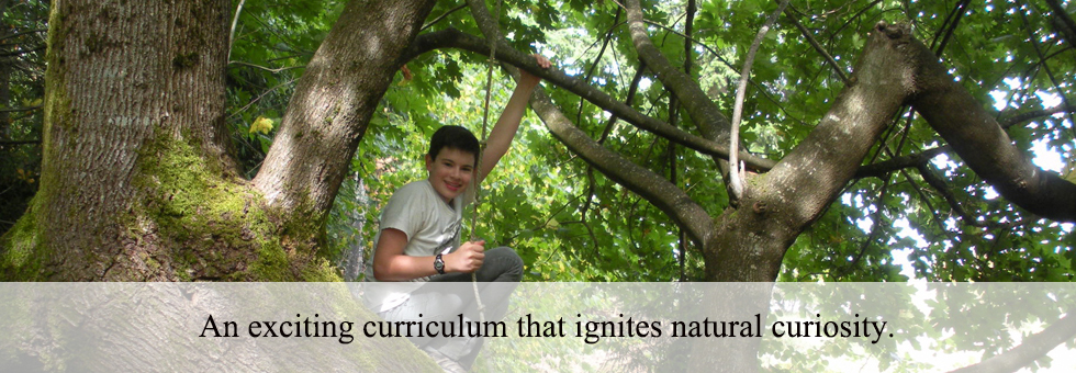 An exciting curriculum that ignites natural curiosity