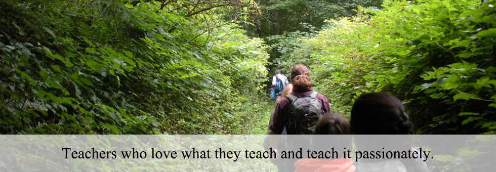 Teachers who love what they teach and teach it passionately