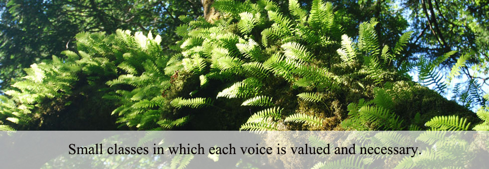Small classes in which each voice is valued and necessary