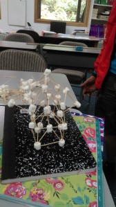 5th grade Math project